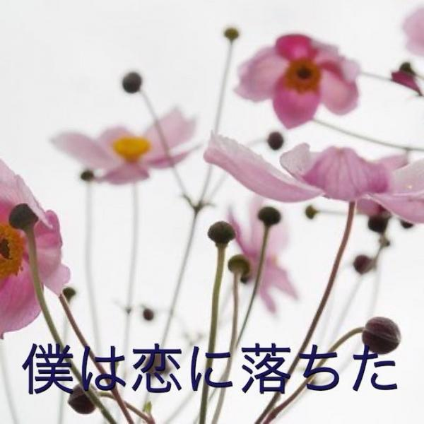 [Single] 初音ミク (Hatsune Miku) – 僕は恋に落ちた [FLAC / 24bit Lossless / WEB] [2021.02.20]