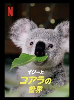 [ドラマ] イジーとコアラの世界 第1シーズン 全8話 (2021) (WEBRIP)