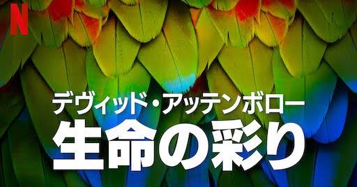 [ドラマ] デヴィッド・アッテンボロー: 生命の彩り 第1シーズン 全3話 (2021) (WEBRIP)