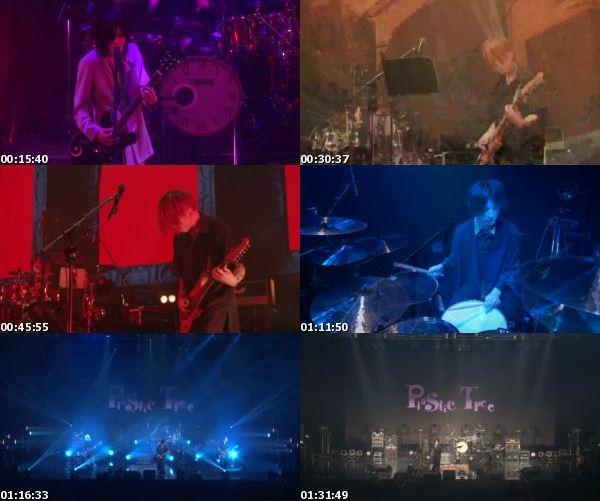 """[TV-Variety] Plastic Tree – streaming live """"Peep Plastic Partition #6 Hakusei"""" (2021.03.28)"""