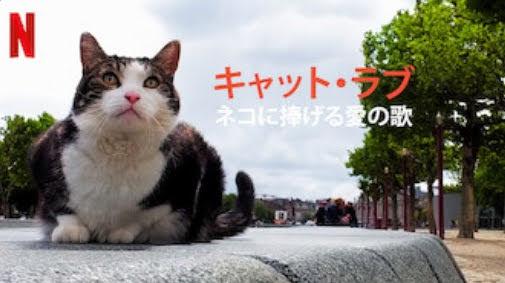 [MOVIES] キャット・ラブ: ネコに捧げる愛の歌 (2021) (WEBRIP)